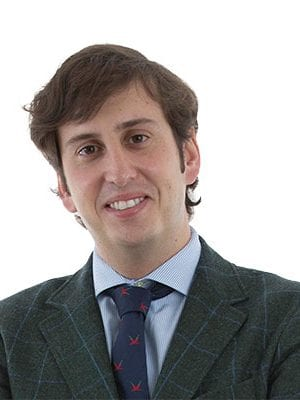 Luis Fernández-Vega Cueto-Felgueroso MD